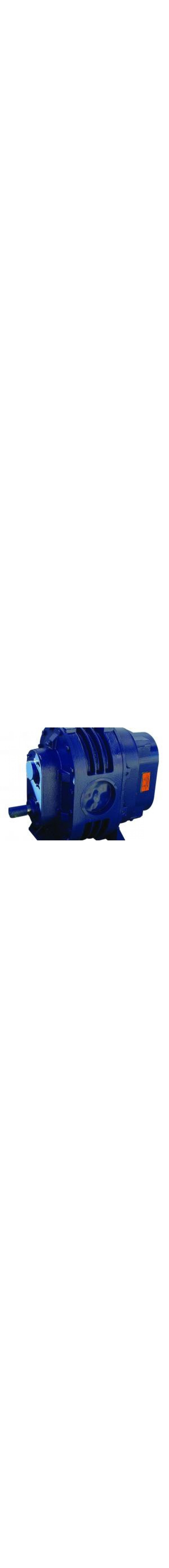 Blower Vacuum Pump